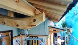 自然素材、熟練大工、墨付け、手刻み、木組み、手仕事創る健康住宅12,07